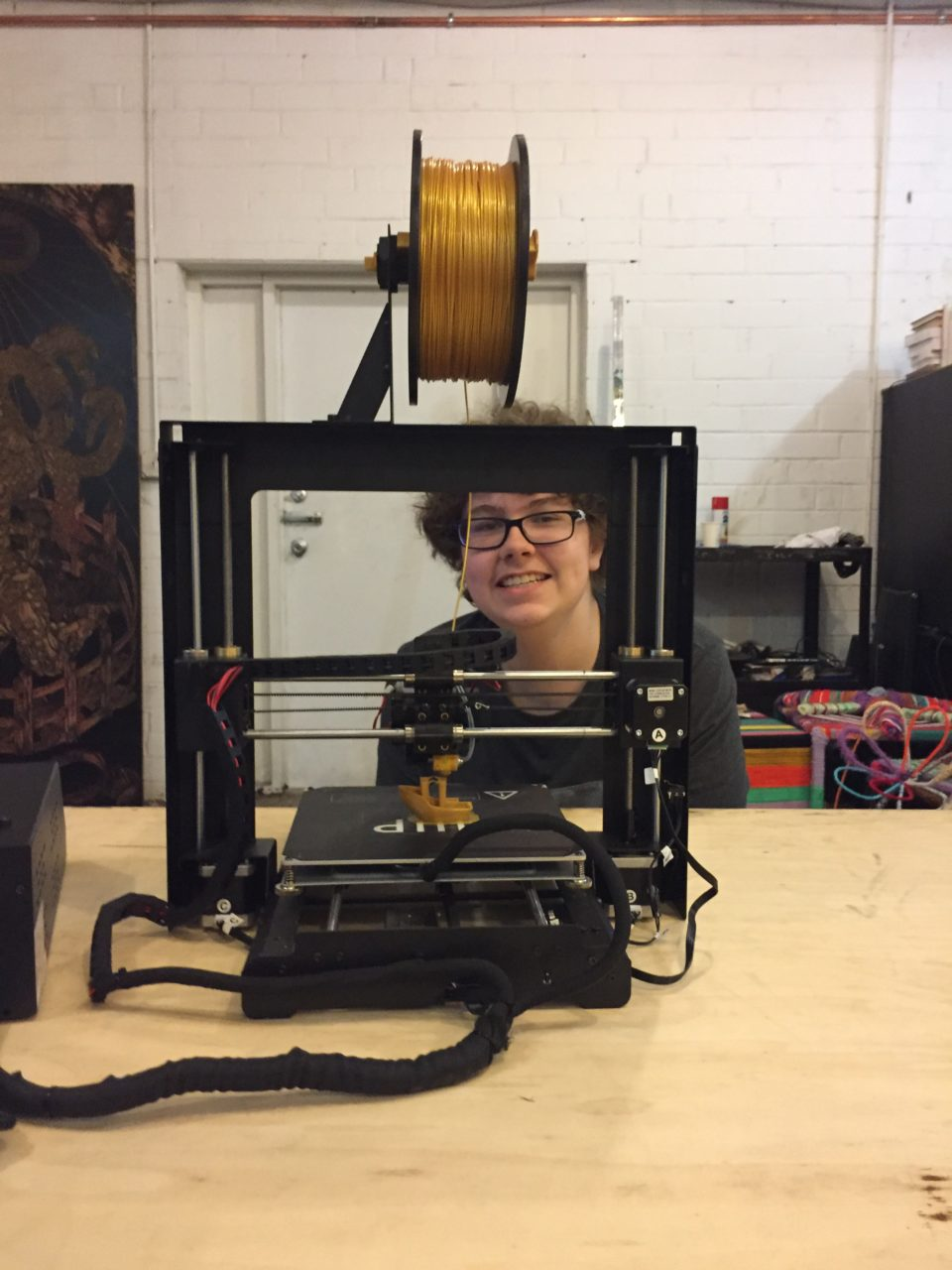 The fun of playing on a 3D printer. Copyright Andrea LeDew.