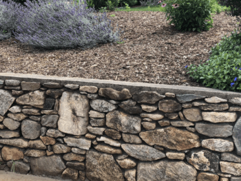 A low wall made of rocks set into plaster or concrete, holding back a raised bed floral garden.