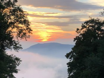 Sunset in the mountains near Asheville,, NC, seen between two banks of trees, with clouds forming a blanket to cover everything but the rounded peak of the mountain. Copyright Andrea LeDew