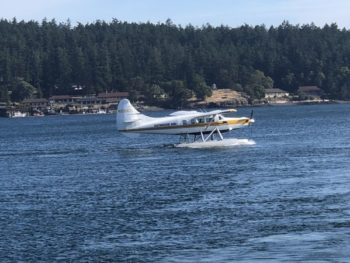 Small two-seater seaplane landing on water in front of a forested area with low buildingson the waterfront.