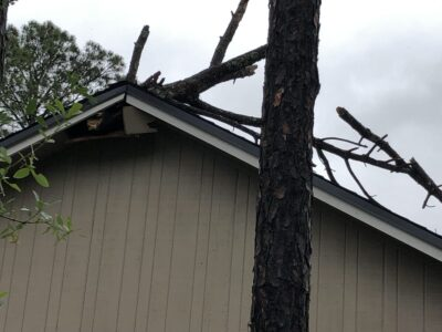 A branch piercing a roof, where it has fallen during a storm.