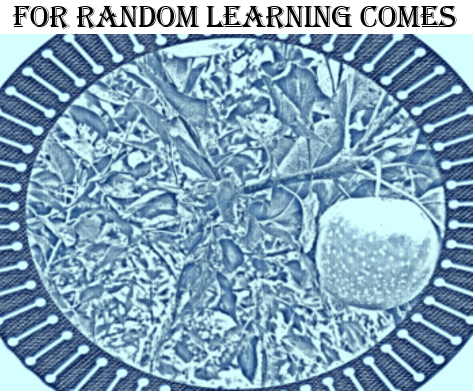 For Random Learning Comes Logo with Caption