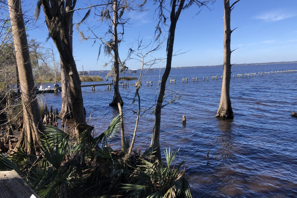 St Johns River, Jacksonville Florida