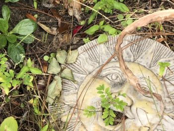 A stepping stone in the shape of a smiling sun's face, overgrown with greenery. Copyright Andrea LeDew