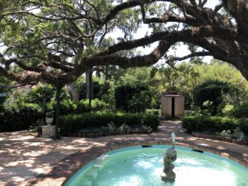 A small blue pool with a cherup statue in the center, over-arched by an ancient live oak, nestled in green shade and surrounded by a paved area. Copyright Andrea LeDew.