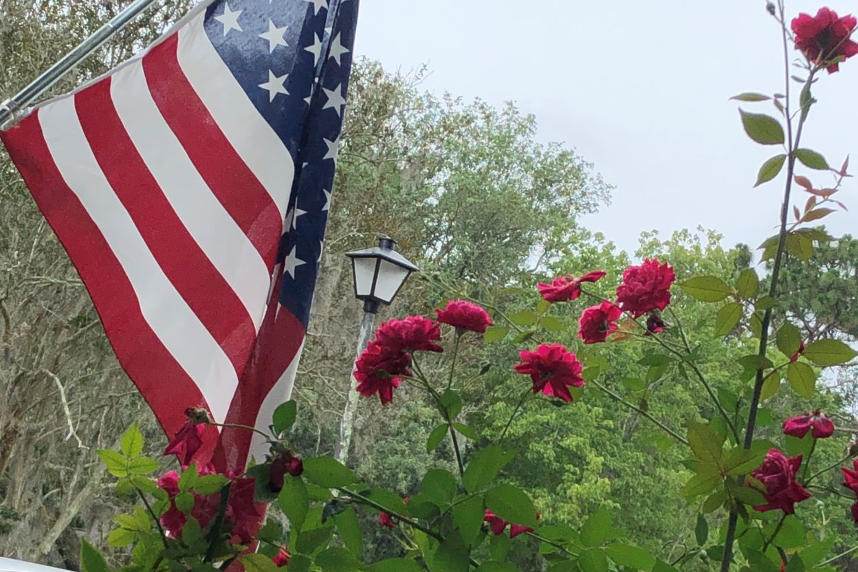 American flag with red roses. Copyright Andrea LeDew