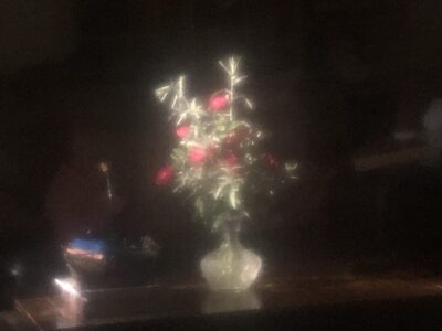 A blurred bouquet in faint light in a darkened room. Copyright Andrea LeDew.