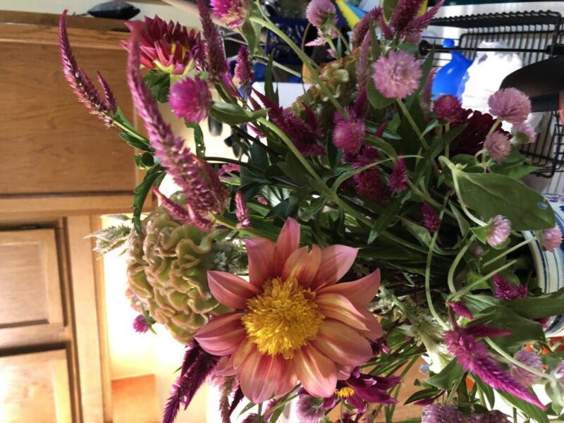 A bouquet of flower such as is often given to sick patients in the hospital. Copyright Andrea LeDew.