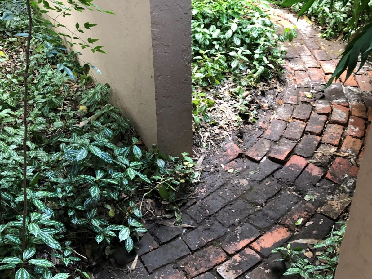 Curving brick walk leading to enclosed garden. By Andrea LeDew.